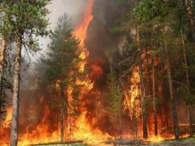 Будьте осторожны с огнем на природе